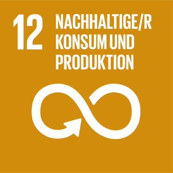 SDG 12 Nachhaltige/r Konsum und Produktion