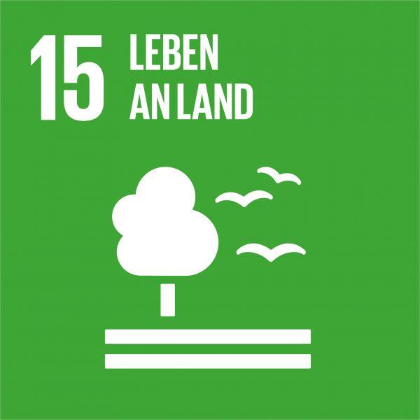 SDG 15 Leben an Land