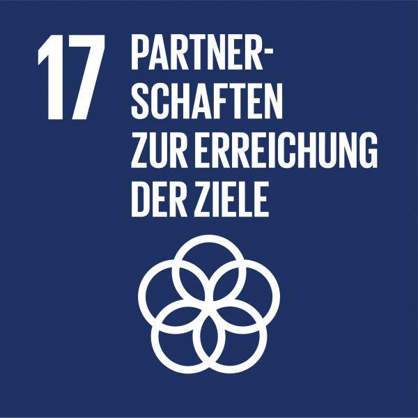 SDG 17 Partnerschaften zur Erreichung der Ziele