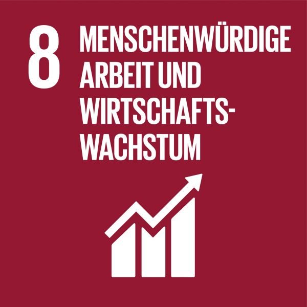 SDG 8 Menschenwürdige Arbeit und Wirtschaftswachstum